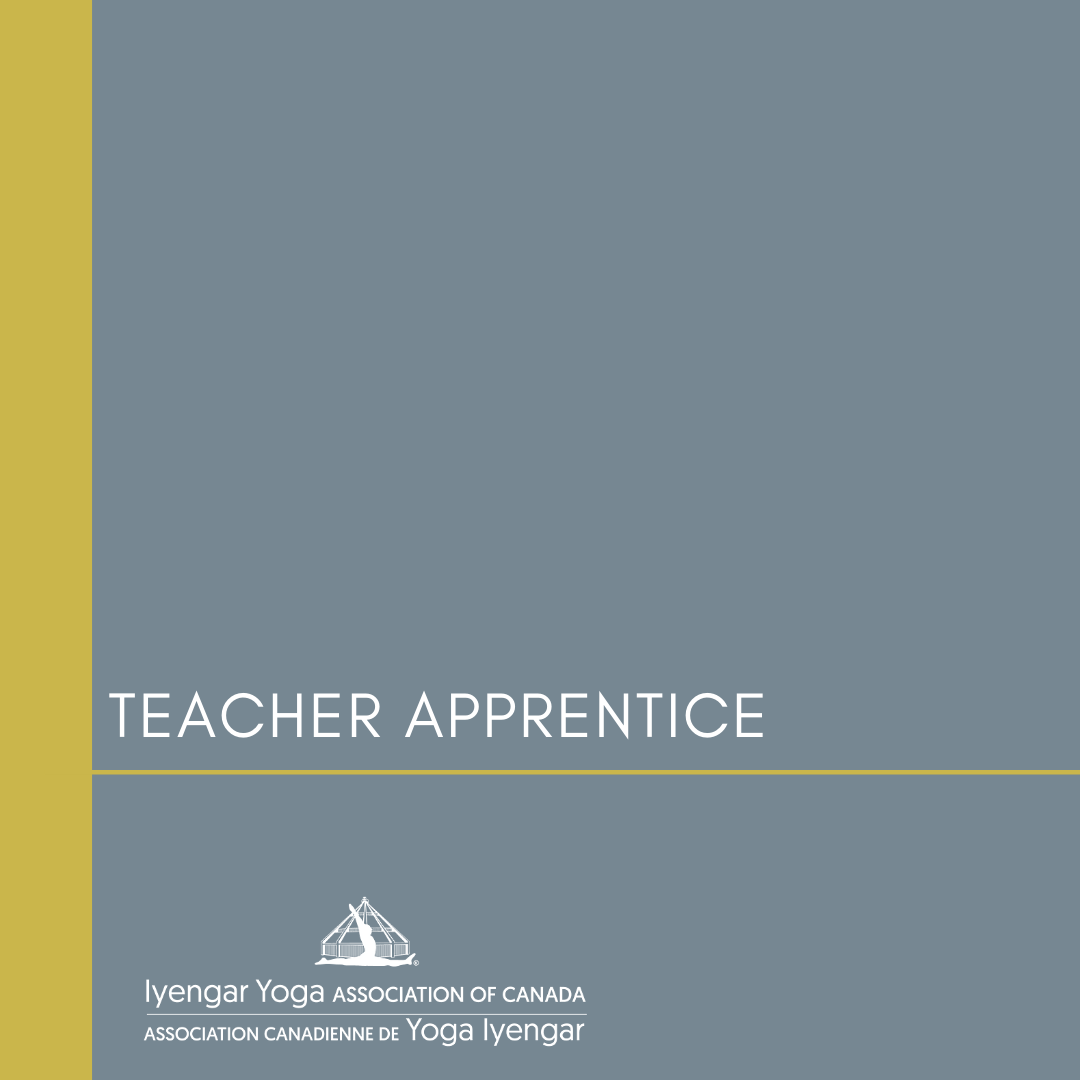 Teacher Apprentice